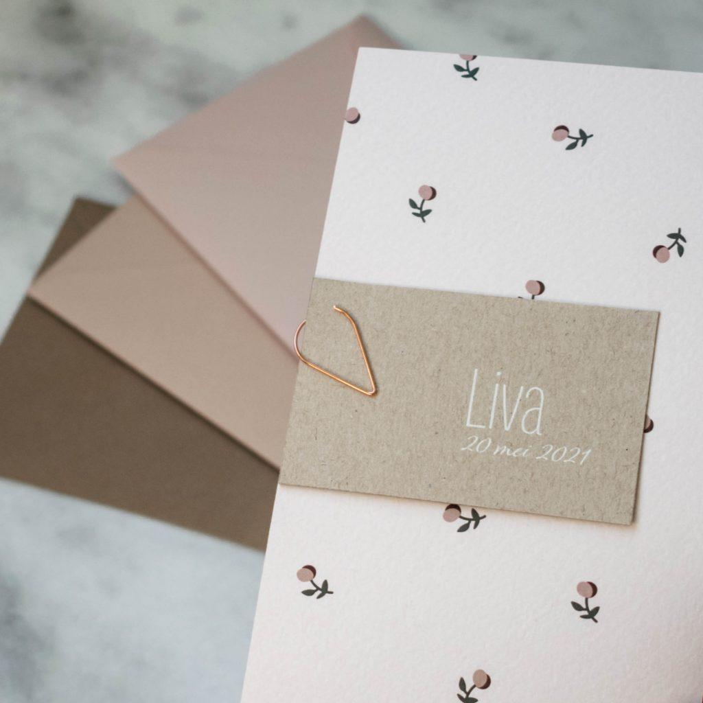 Geboortekaartje Liva
